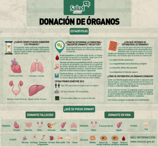 donacionorganosinfo.jpg2