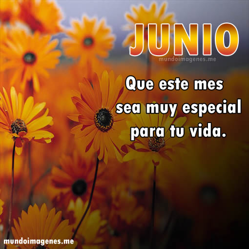 juniofrase