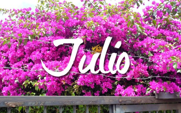 juliocartel1