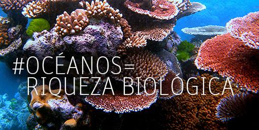 oceanos.jpg22