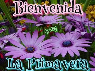 HolaPrimavera29