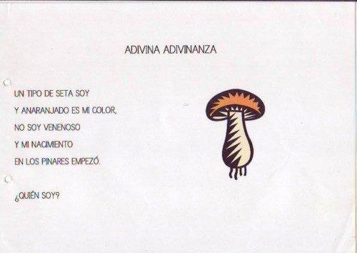 Adivinanza38