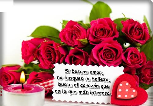 bellasflores9