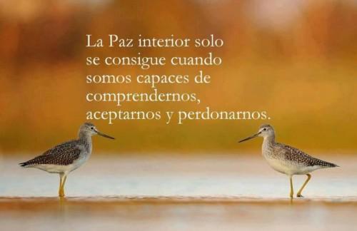 Imágenes Con Frases Alusivas A La Paz Y El Amor En El Mundo