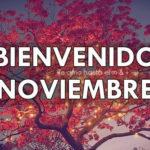 Imágenes bonitas con frases para darle la bienvenida la mes de noviembre