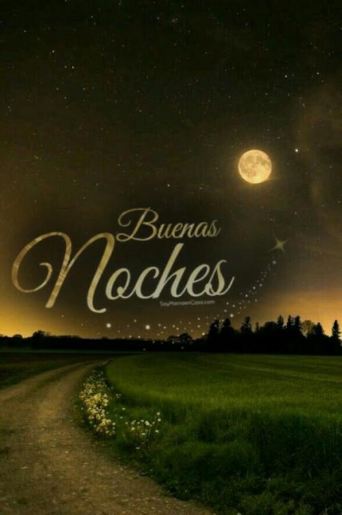 Buenas Noches Linda Noche Fotos Gifs Y Mensajes De Buenas Noches