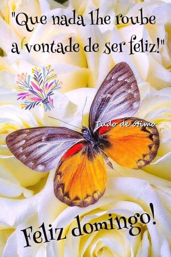 Imágenes Y Frases Bonitas De Feliz Domingo Todo Imágenes