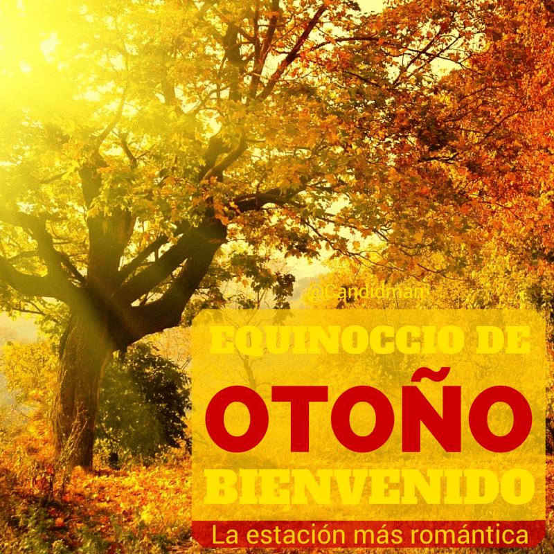 Bienvenido Otoño 2019 Imágenes Tarjetas Y Frases Bonitas