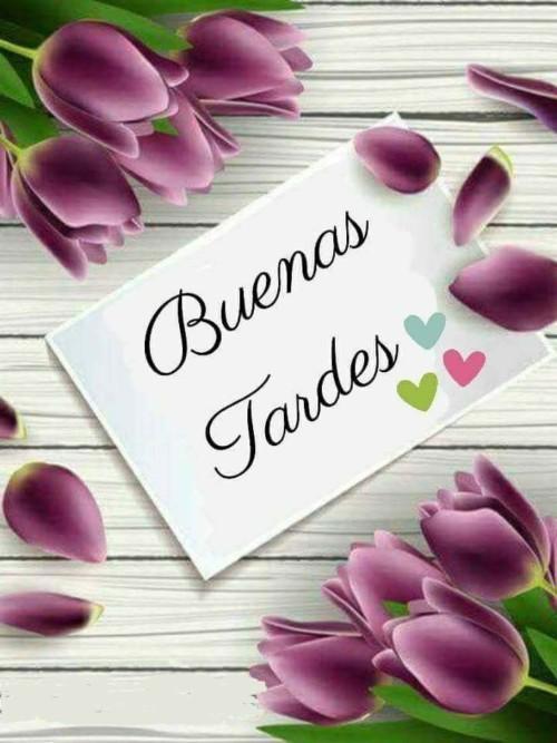 Buenas Tardes Amig@s BuenasTardes