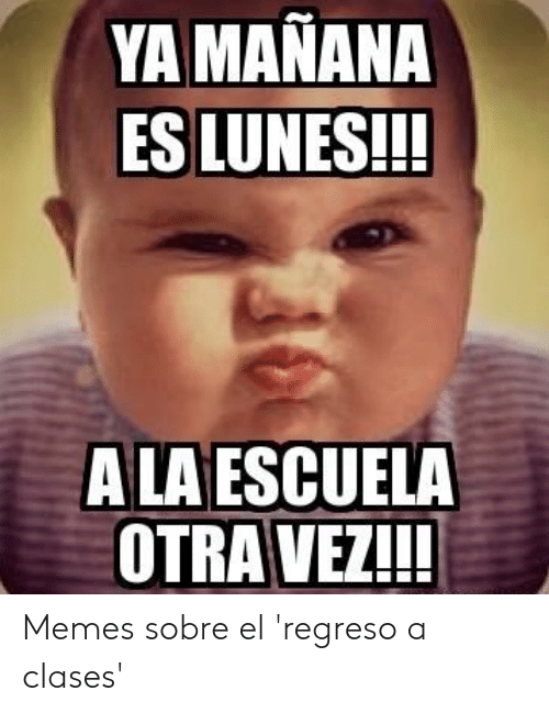 Memes De Regreso A Clases Los Mas Chistosos 2020 Todo Imagenes